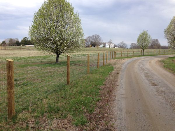 Horse Fencing And Farm Fencing In Rowan County Salisbury Ncarmstrong Fence Llc